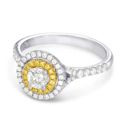 Round White and Fancy Intense Yellow Diamond Double Halo Ring (0.71Ct TW)