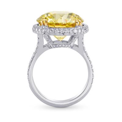 Extraordinary Fancy Brownish Yellow Round Diamond Halo Ring (11.04Ct TW)