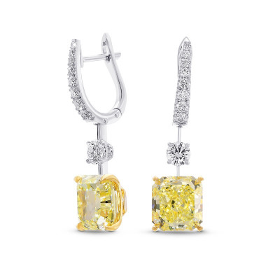 Fancy Yellow and Collection color Drop Diamond Earrings (8.56Ct TW)