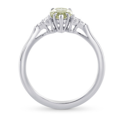 Chameleon and Diamond Side Stones Ring (1.18Ct TW)