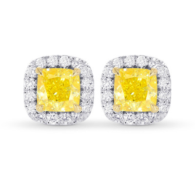 Fancy Intense Yellow Cushion Halo Earrings (1.23Ct TW)