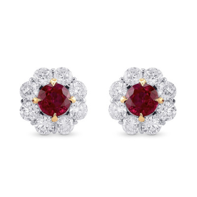 Pigeon Blood Ruby & Diamond Floral Halo Earrings (2.86Ct TW)