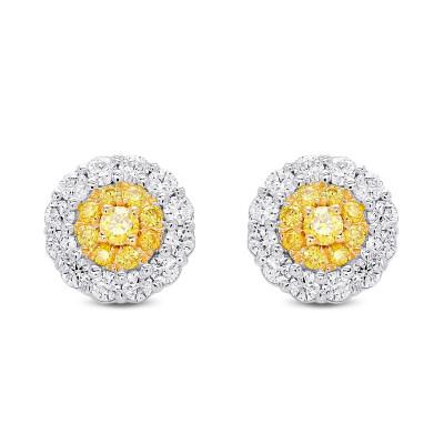 Fancy Intense Yellow  Round Brilliant Double Halo Diamond Earrings (0.88Ct TW)
