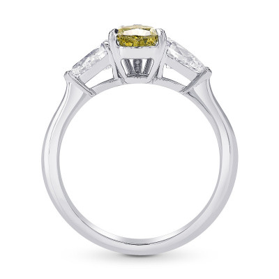 Chameleon Pear Shape and Collection Diamonds 3 stone Ring (1.89Ct TW)
