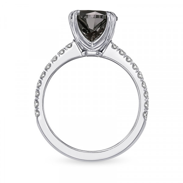 Fancy Black Round Diamond Side-stone Ring (2.55Ct TW)