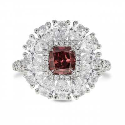 Extraordinary Fancy Red and Diamond Couture Ring (3.86Ct TW)