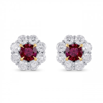 Pigeon Blood Ruby & Diamond Floral Halo Earrings (2.72Ct TW)